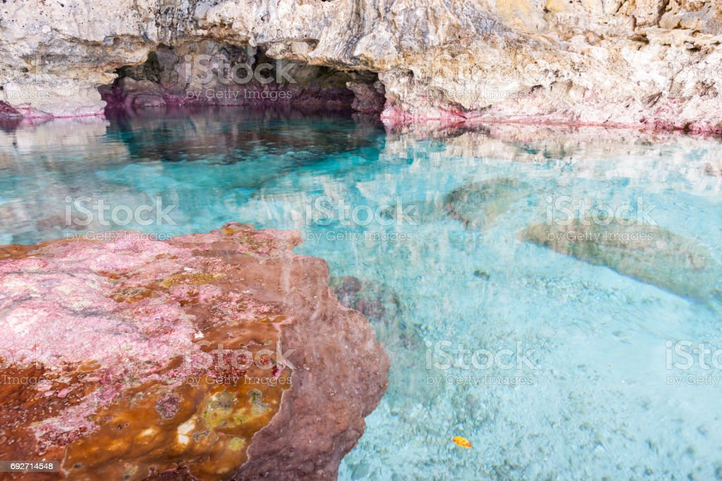 Calm turquoise colored water in pool in limestone  cave on coast of Niue. stock photo