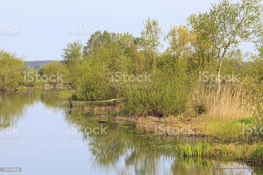 Calm view of a river royalty-free stock photo