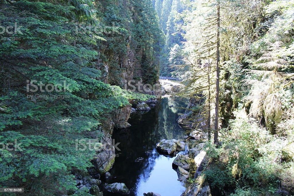 Calm Waters, Capilano River Canyon stock photo