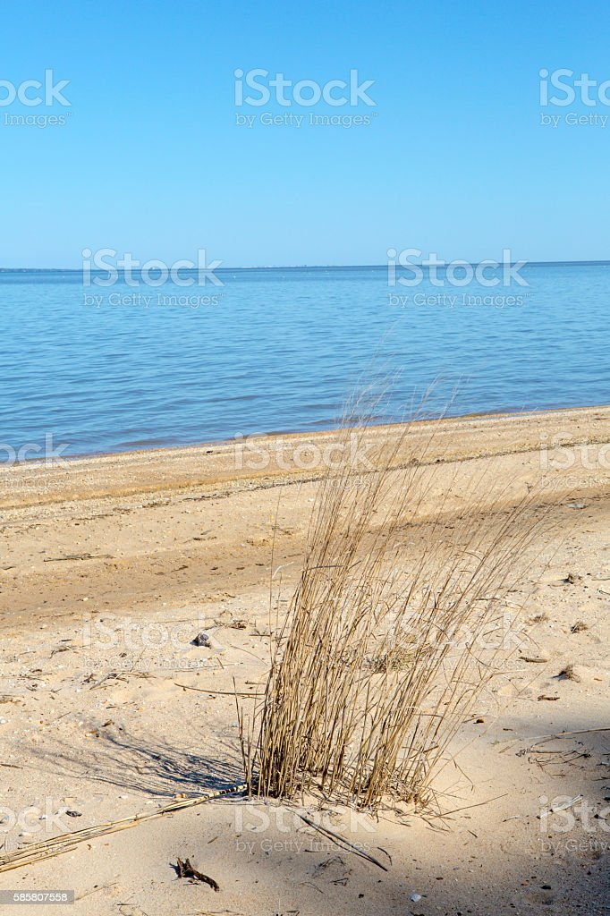 Calm waters of a serene beach in Chesapeake Bay stock photo