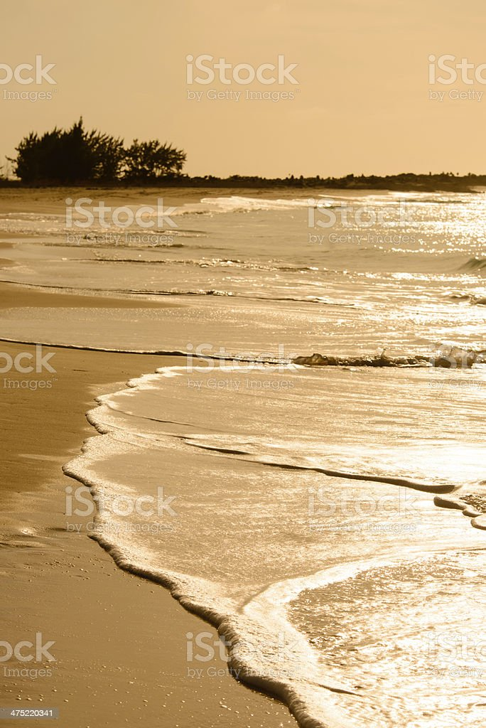 Calming Waves - Vertical royalty-free stock photo