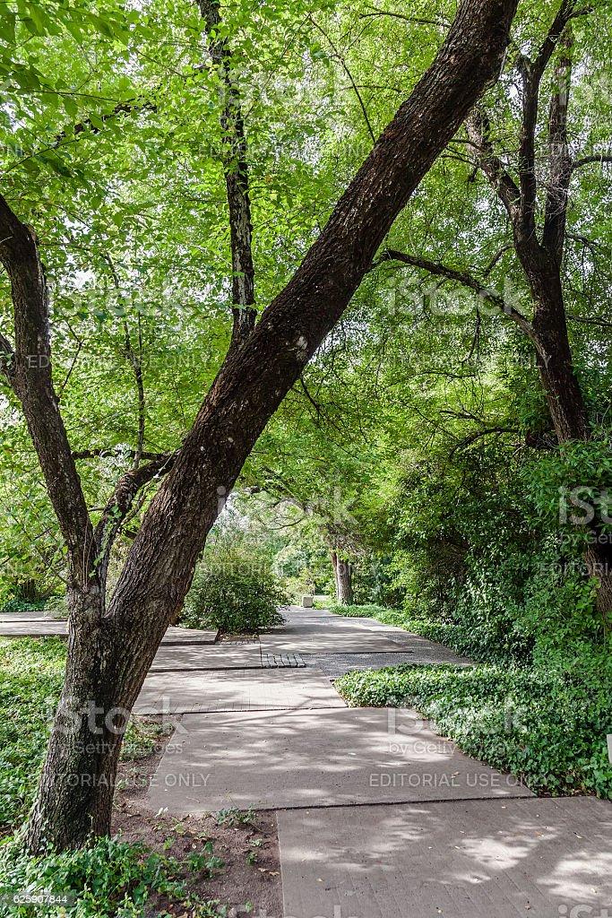 Calouste Gulbenkian Gardens, Lisbon, Portugal stock photo