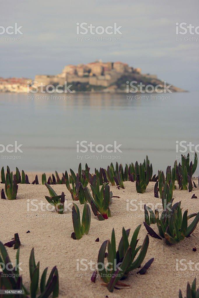 Calvi beach stock photo