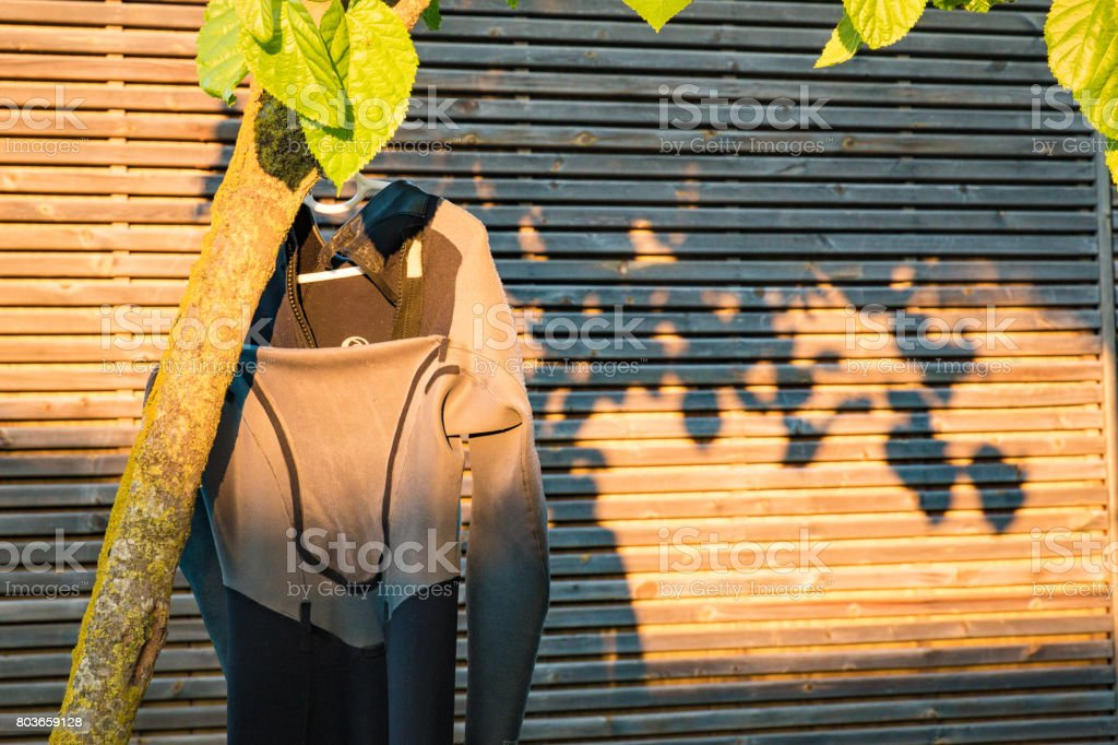 Calypso drying under gentle sunset stock photo