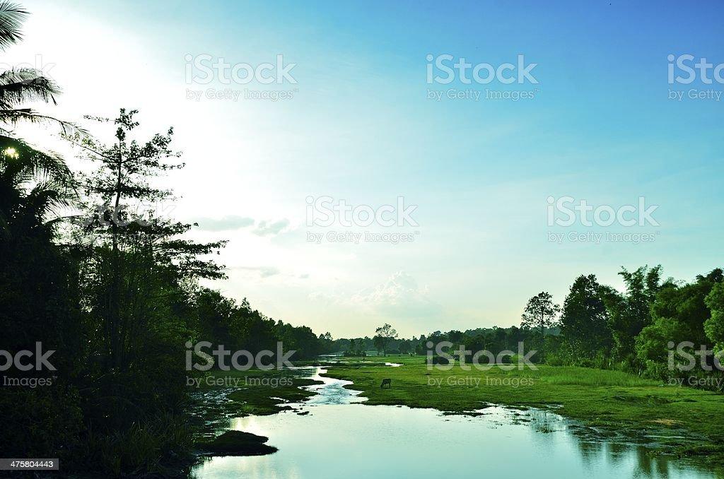 Cambodia countryside stock photo