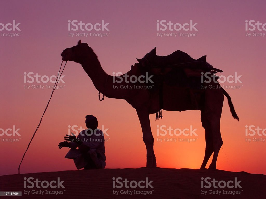 Camel and his driver during sunset  at Sam Dunes,  Rajasthan royalty-free stock photo