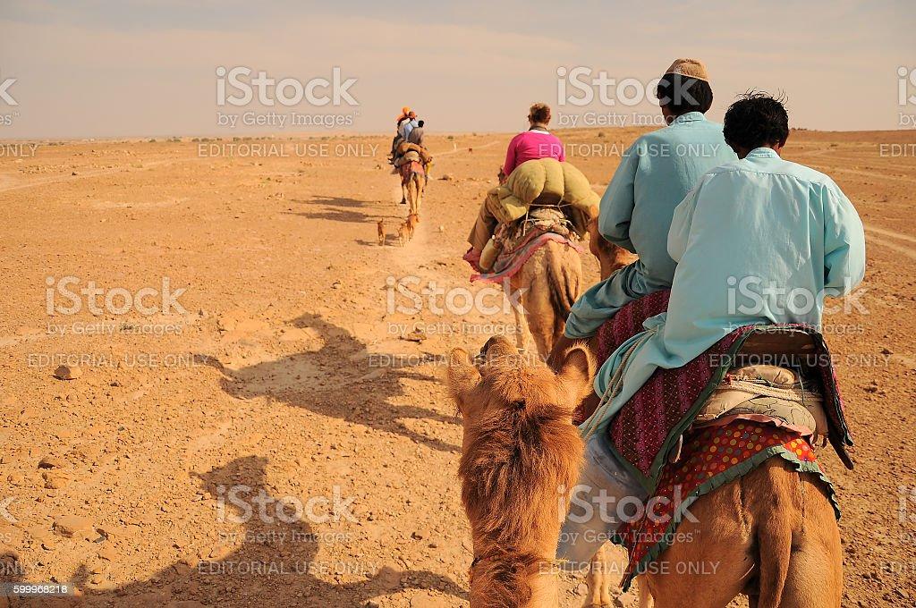 Camel caravan going through Thar desert, Jaisalmer, Rajasthan, India. stock photo