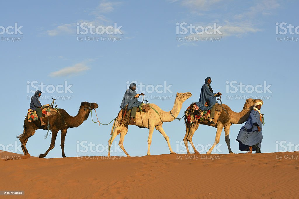 Camel caravan in Morocco stock photo
