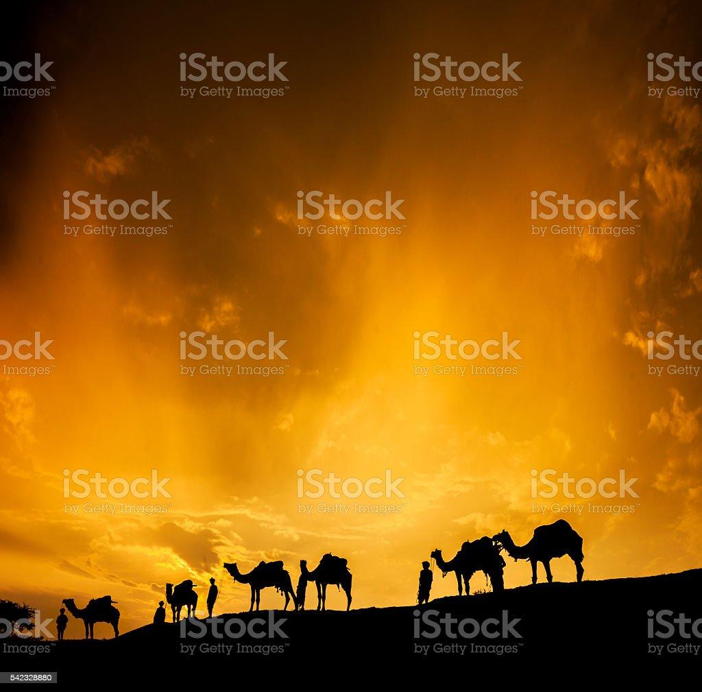 Camel Caravan through the Desert stock photo