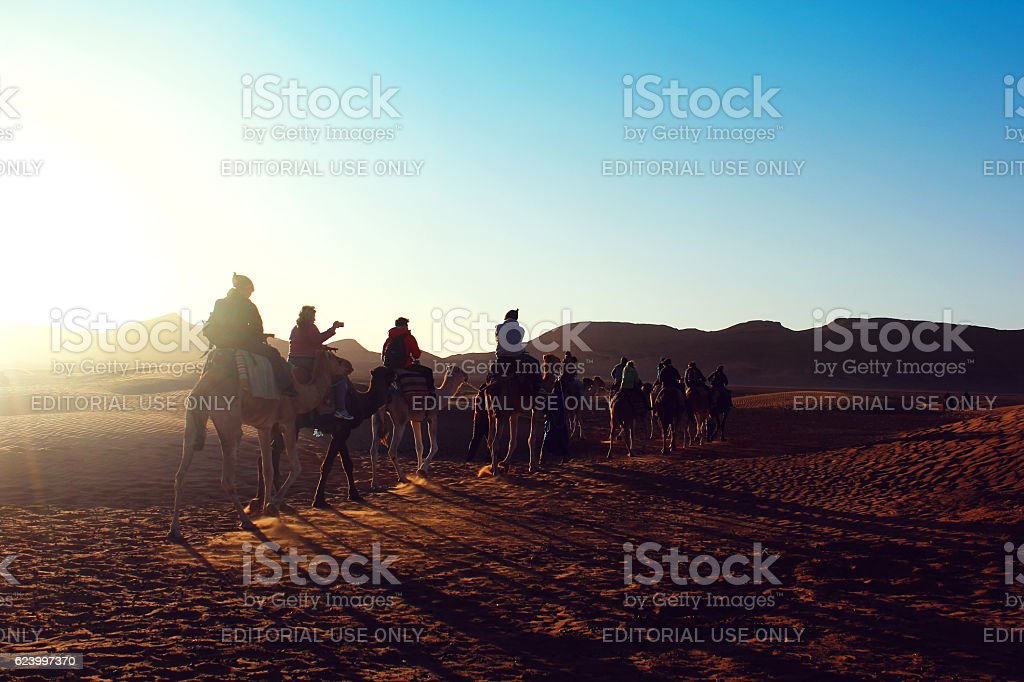 Camel Caravana in Sahara Desert stock photo