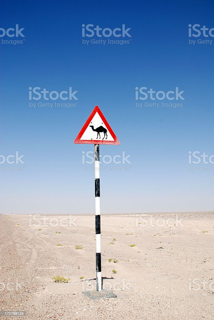 Camel Crossing Sign royalty-free stock photo