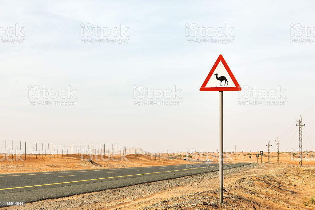 Camel Crossing Warning Sign on Highway between Dubai, Sharjah, UAE stock photo