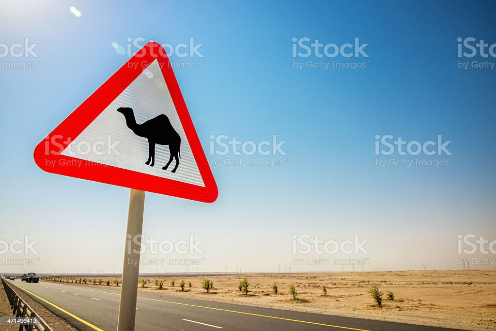 Camel Danger Sign royalty-free stock photo