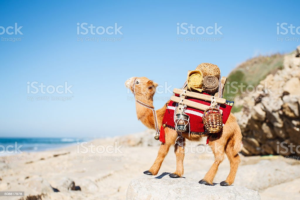 Camel loaded goods on the sand stock photo