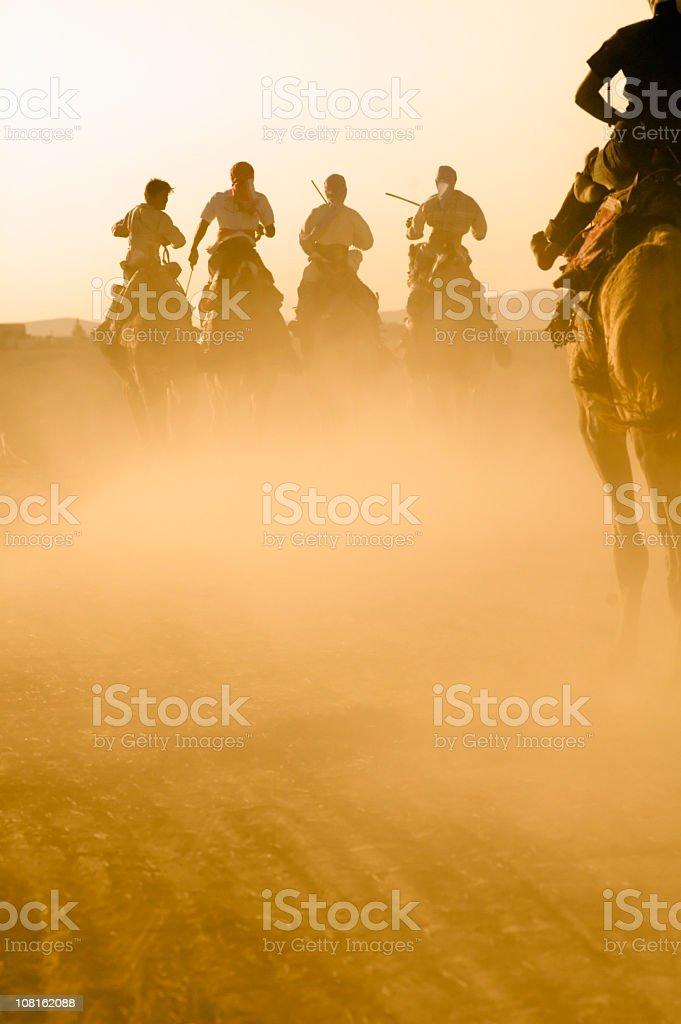 Camel Race royalty-free stock photo