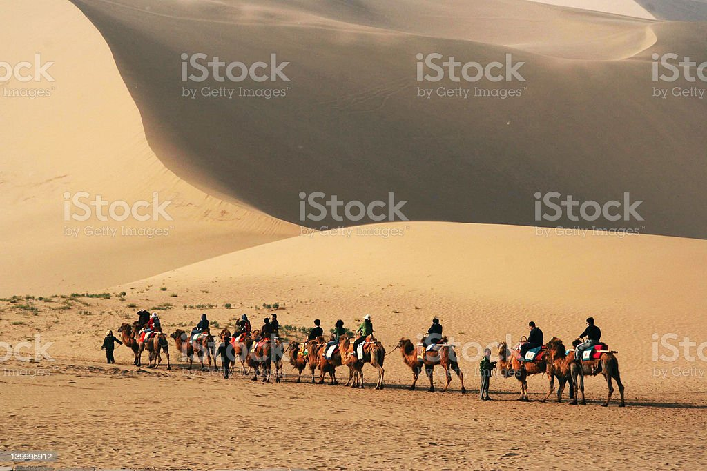 Camel ride in Gobi Desert stock photo