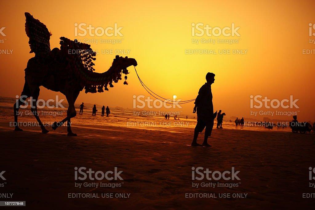 Camel Rider at Sunset, Clifton Beach, Karachi - Pakistan stock photo