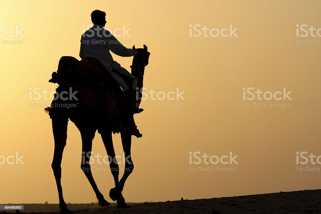 Camel rider silhouette royalty-free stock photo