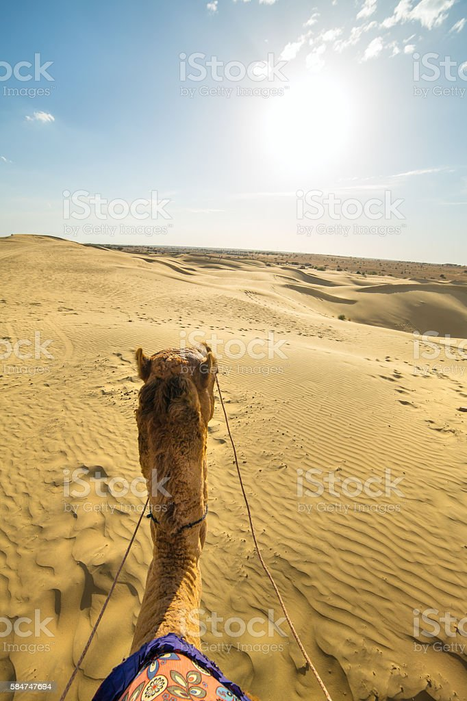 Camel rider view in Thar desert stock photo