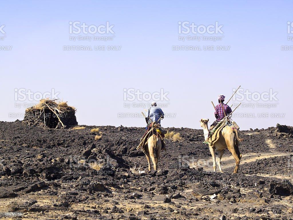 Camel Riders stock photo