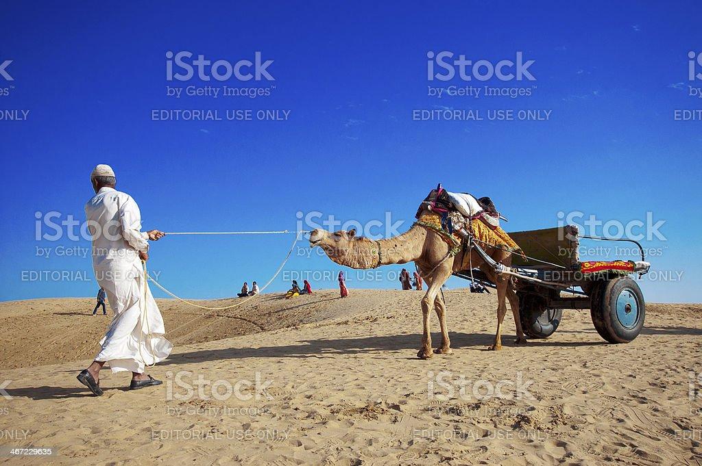 Camel riding in the desert stock photo