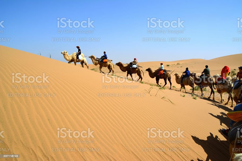 Camel riding, Tengger desert Inner Mongolia stock photo