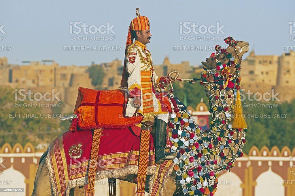Camel Salute stock photo