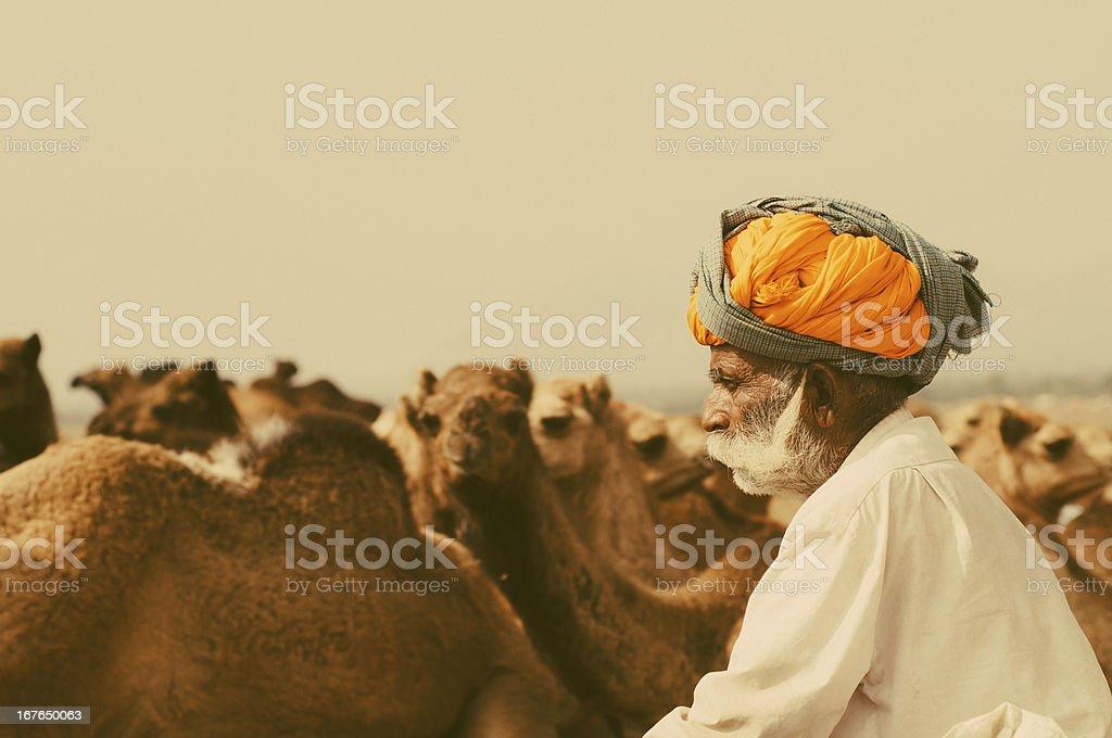 Camel Shepherd Pushkar stock photo