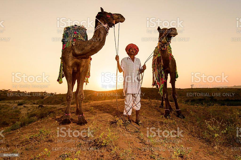 Camel Trader. stock photo