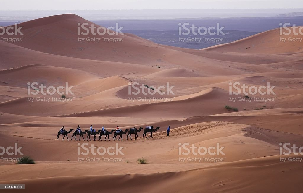 Camel train moving across the Sahara Desert royalty-free stock photo