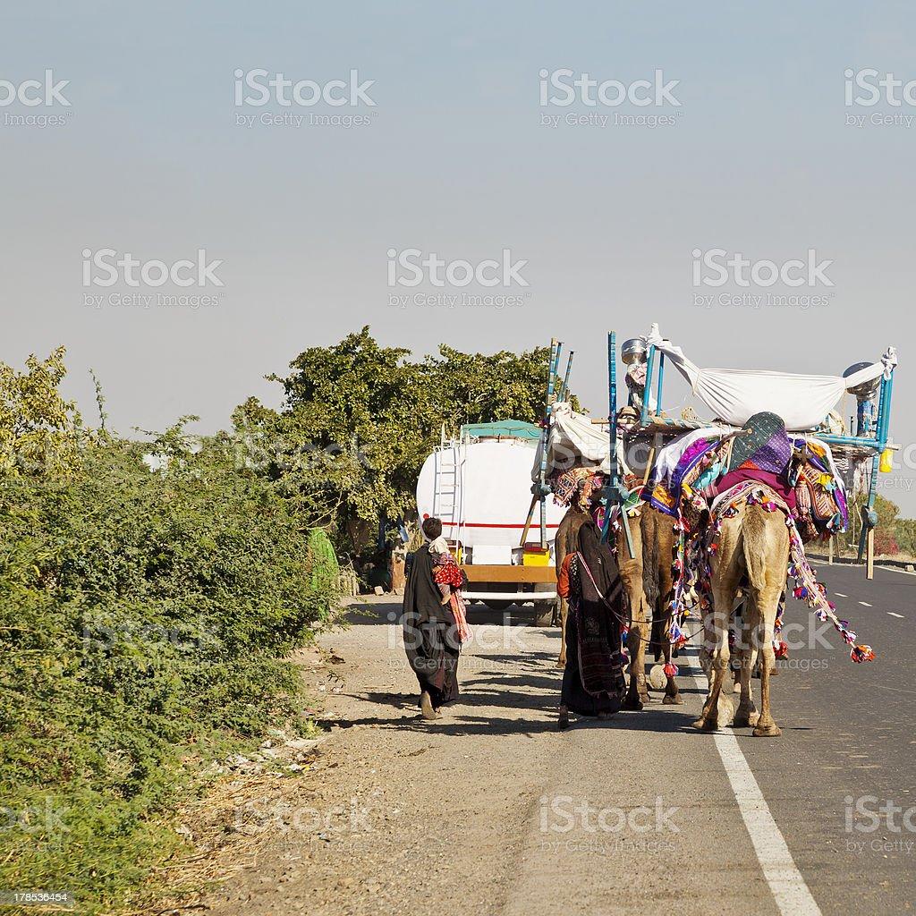 Camel train on Ahmedabad Road royalty-free stock photo