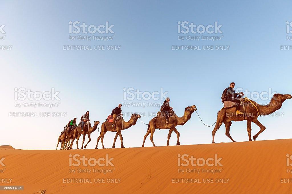 Camel Trekking, Erg Chebbi Sand Dune at Sunrise, Morocco, Africa stock photo