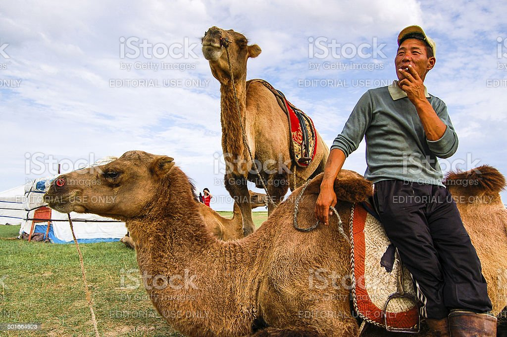 Cameleer and Camels In Mongolia stock photo