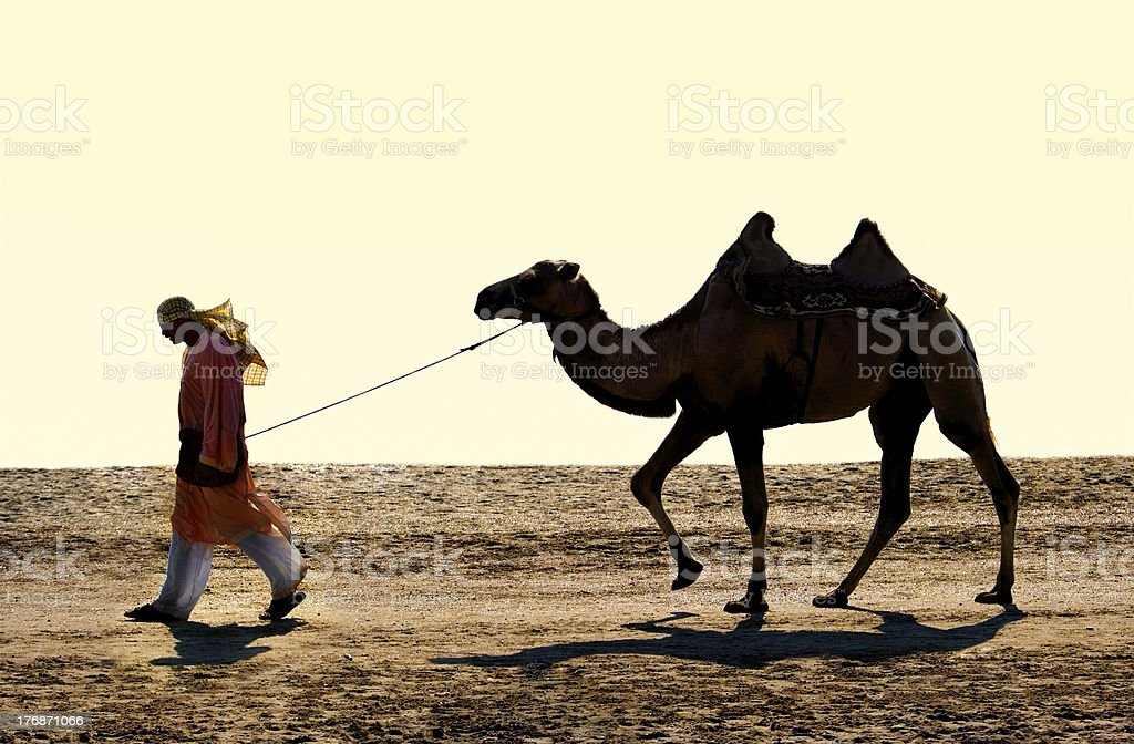 Cameleer stock photo
