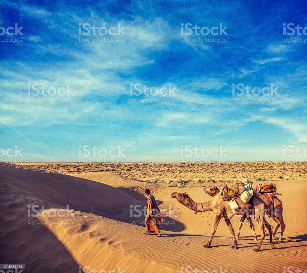 Cameleer (camel driver) with camels in dunes of Thar desert stock photo