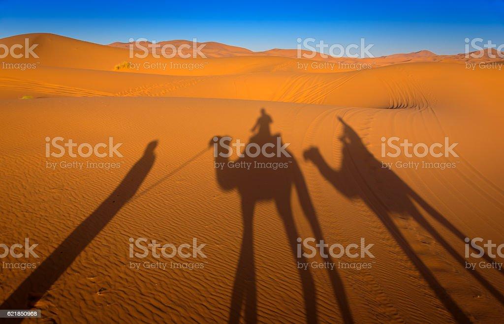 Camelride in the Sahara, Marokko stock photo