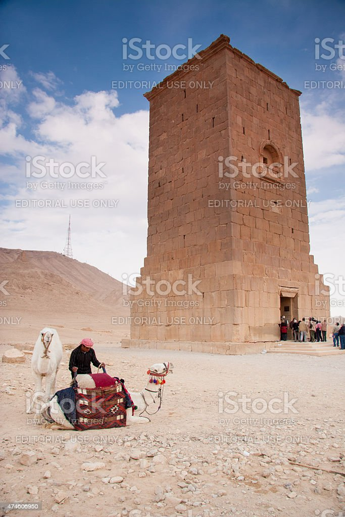 Camels and camel rider, ancient city of Palmyra stock photo