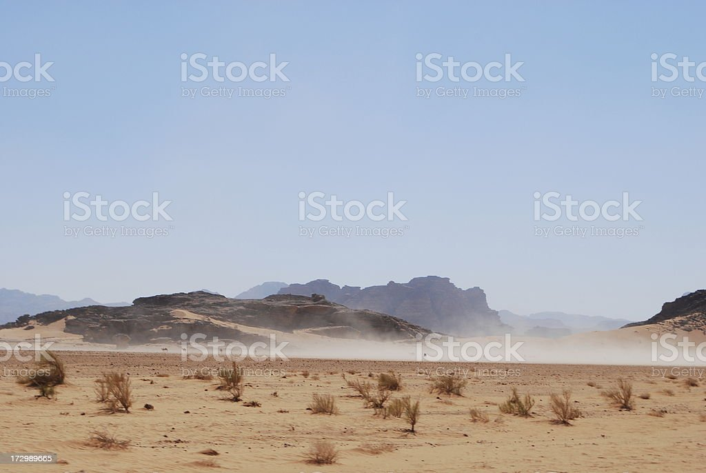 Camels in Wadi Rum royalty-free stock photo