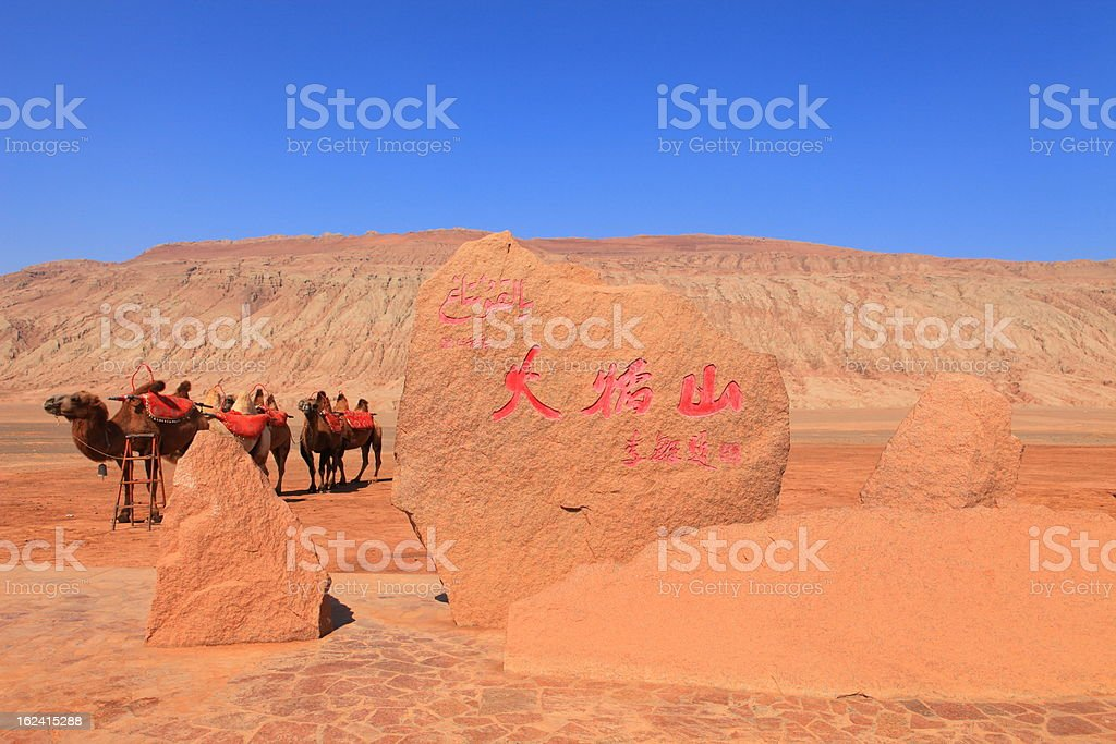 camels standing in front of Flaming Mountain stock photo