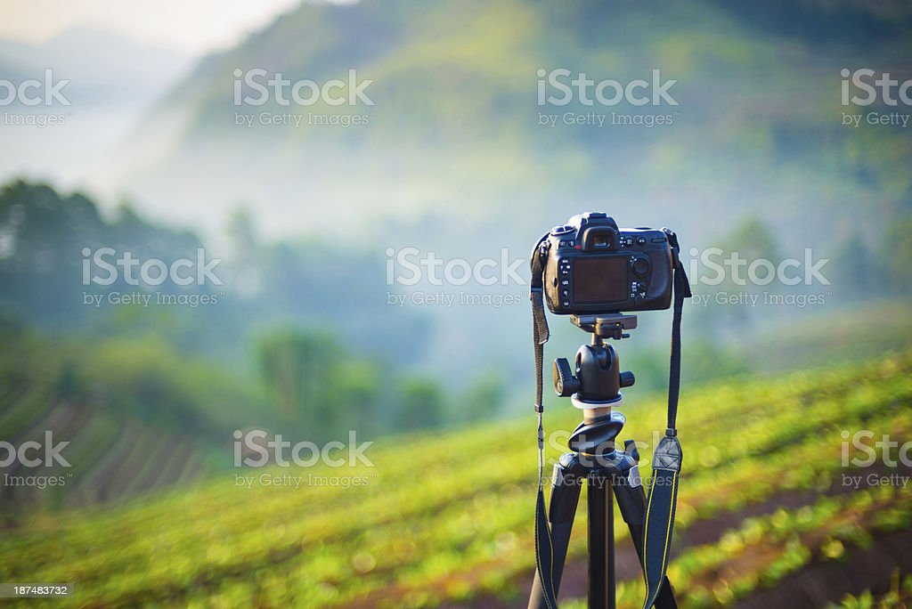 Camera and lens taking photograph in morning time royalty-free stock photo