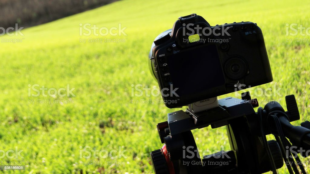 Camera on Green Field stock photo
