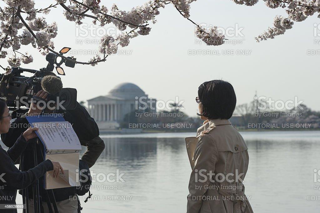 camera team is at the cherry blossoms, tidal basin, washington stock photo