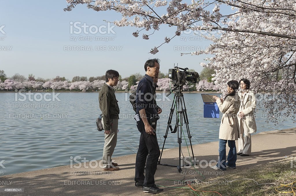 camera team is at the cherry blossoms, tidal basin, washington royalty-free stock photo