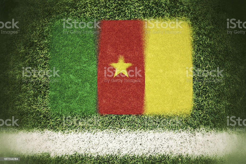 Cameroon flag printed on a soccer field royalty-free stock photo