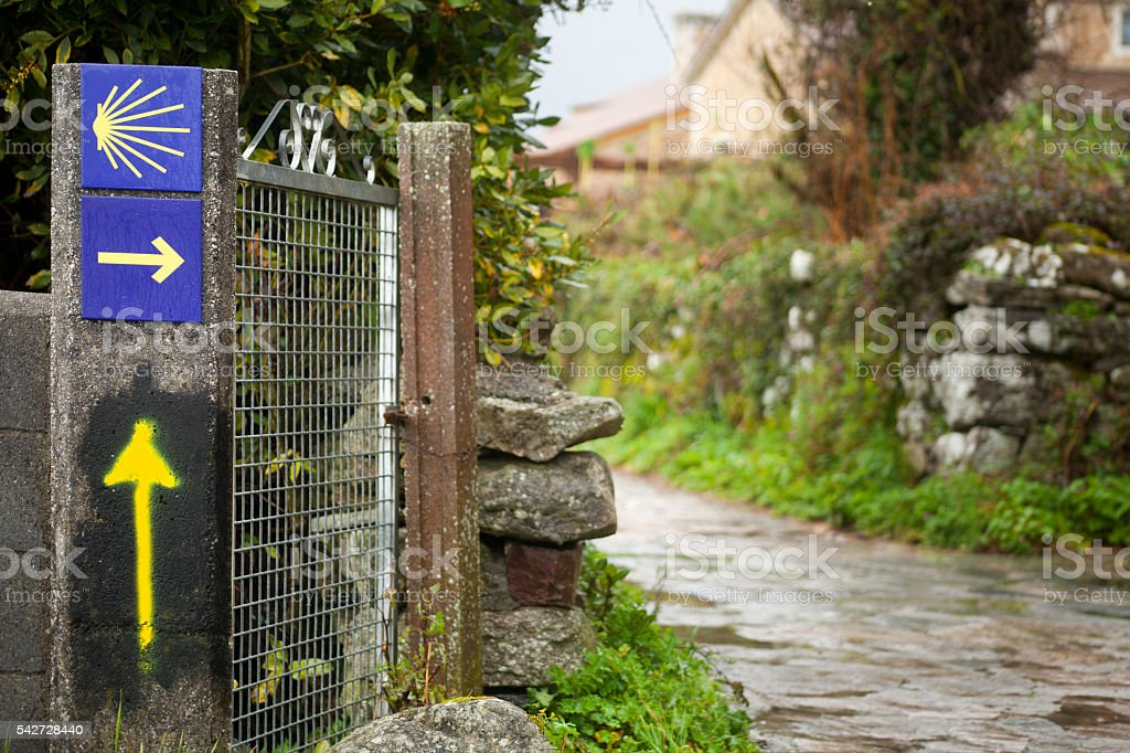 Camino de Santiago yellow arrows, pilgrims scallop in Galicia, Spain. stock photo
