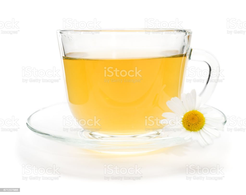 Camomile tea with chamomile flower isolated on white stock photo