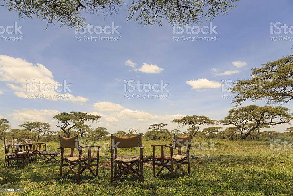Camp chairs in the shade of a tree royalty-free stock photo