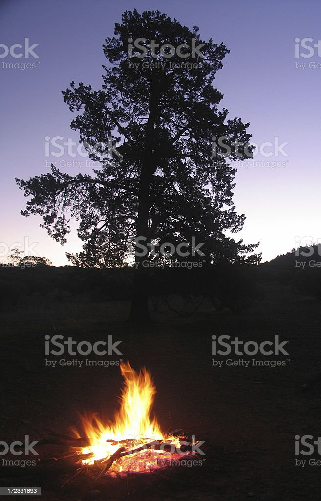 Camp Fire at Dusk royalty-free stock photo