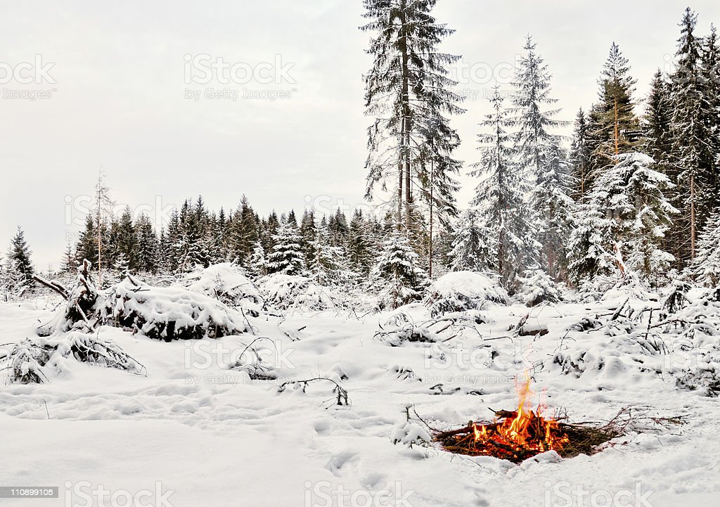 Camp fire im winter forest Lizenzfreies stock-foto
