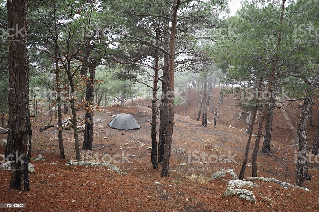 camp in forest royalty-free stock photo
